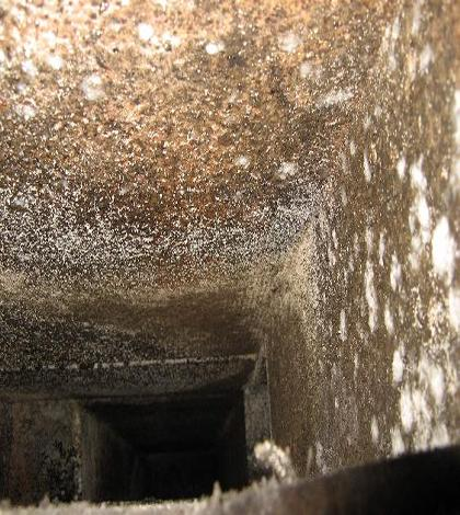 45mmx mold in ductwork