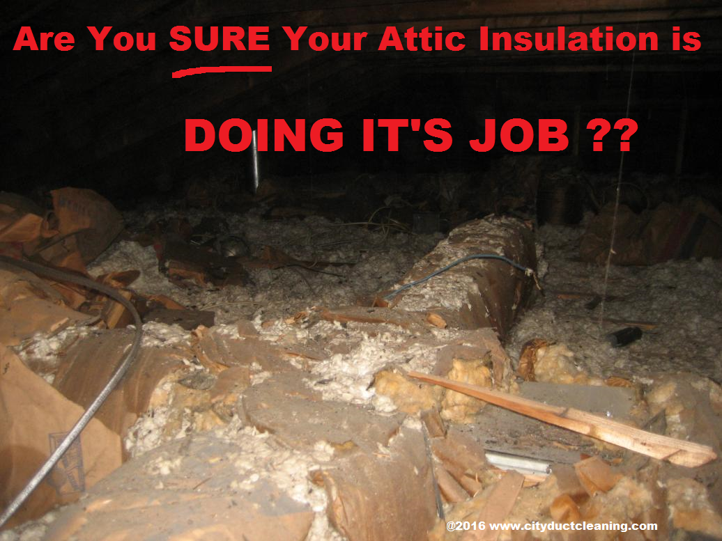 A good canditate for attic insulation removal.