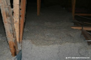attic-insulation-removal-01x
