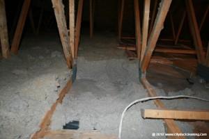 attic-insulation-removal-02x