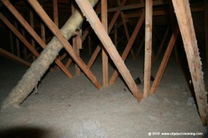 attic-insulation-removal-04x