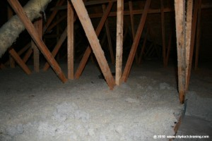 attic-insulation-removal-06x