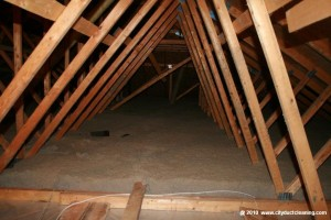 attic-insulation-removal-17x
