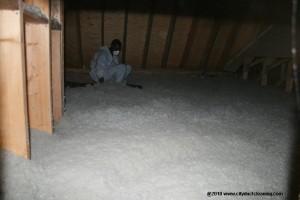 start-attic-insulation-removal