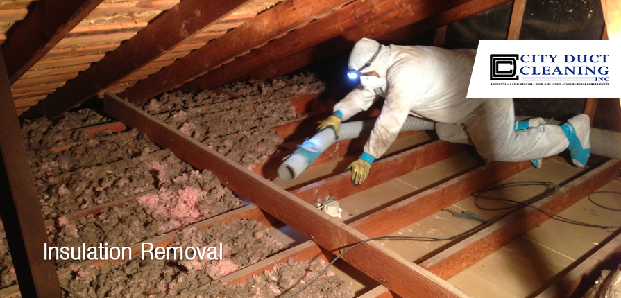 & Attic Insulation Removal Toronto | City Duct Cleaning